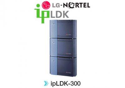 ipLDK-300